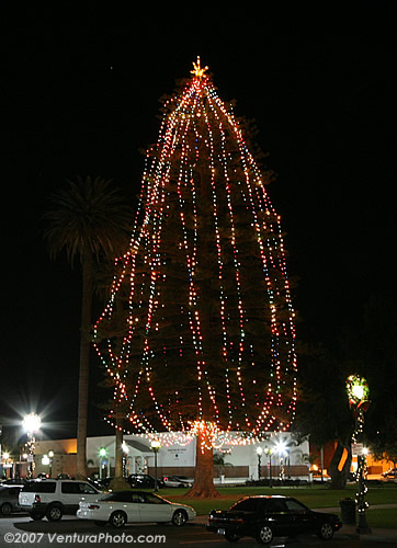 Oxnard Christmas Tree